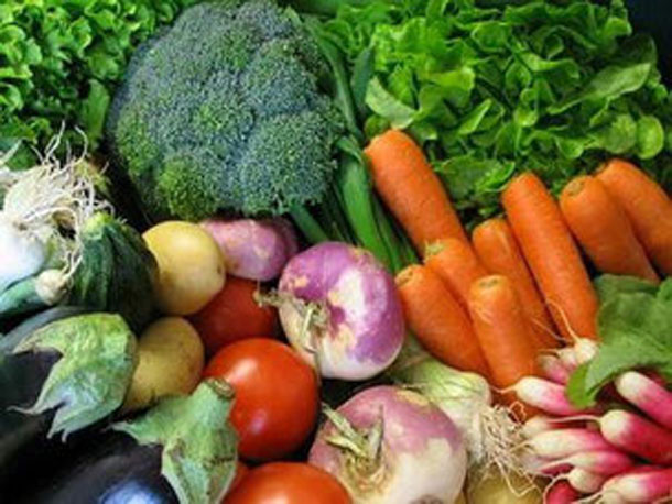 Légumes bio producteur de la ferme  Atelier des Papilles Haute-Saône Montbozon Produits locaux